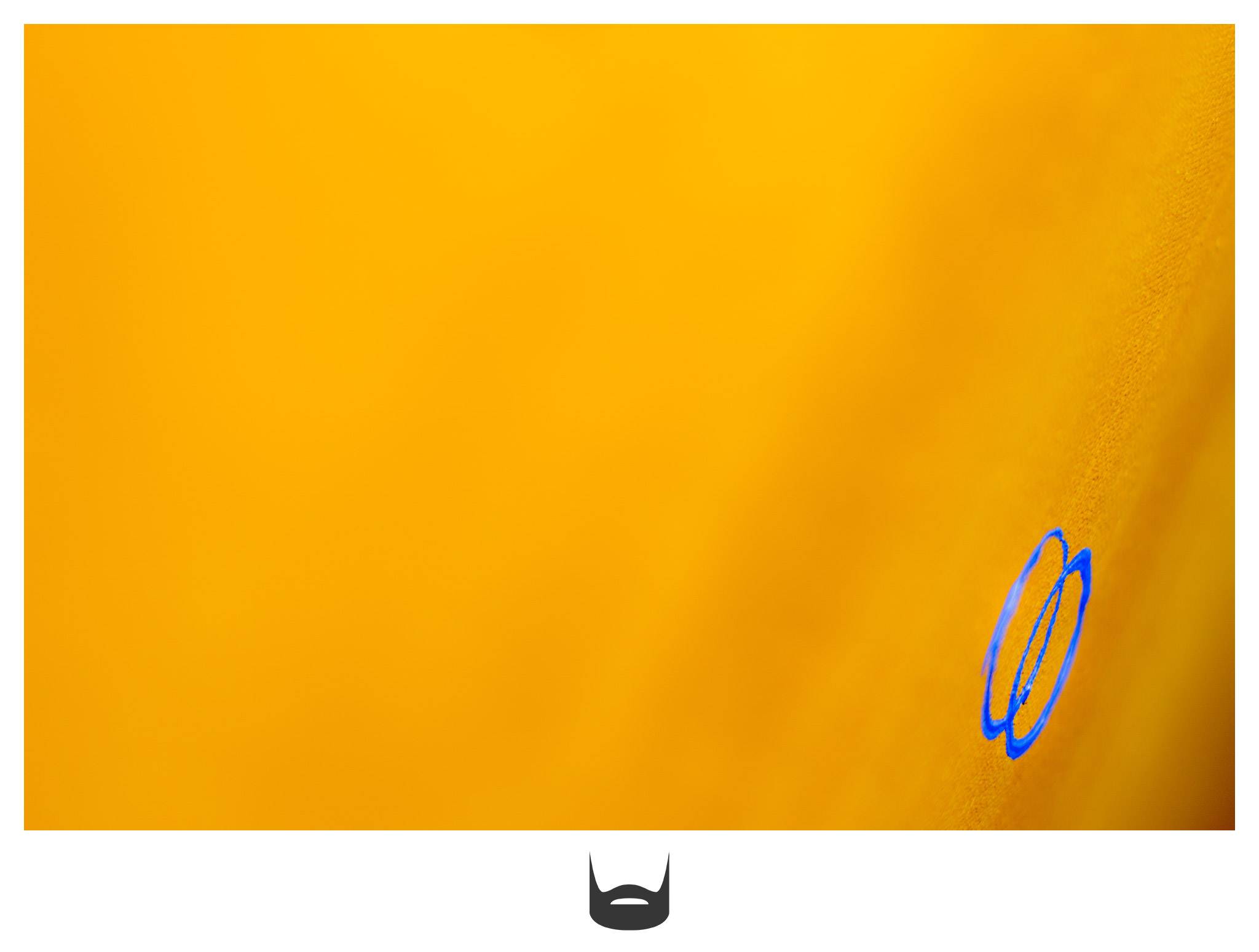 Blue Rings In A Sea Of Yellow Photo