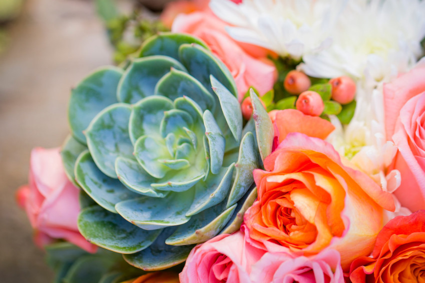 Wedding Bouquet Succulent Detail
