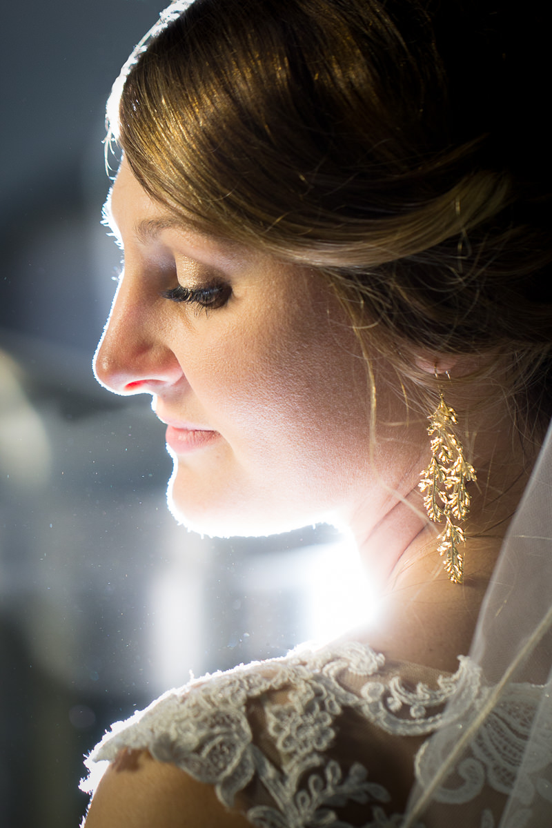 Des Moines Wedding Photography Bride Elegant Portrait