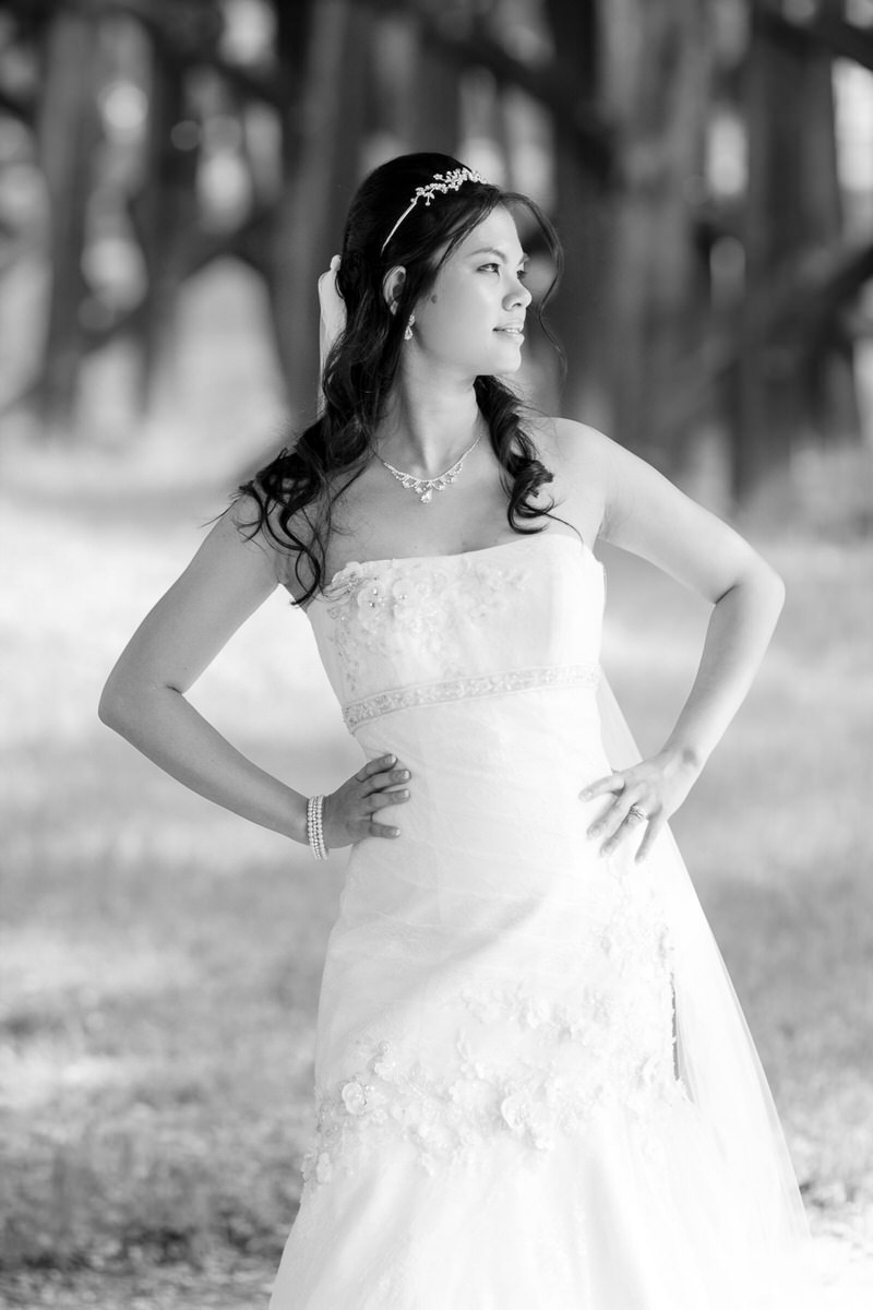 Fort Worth Wedding Photography Bridal Portrait