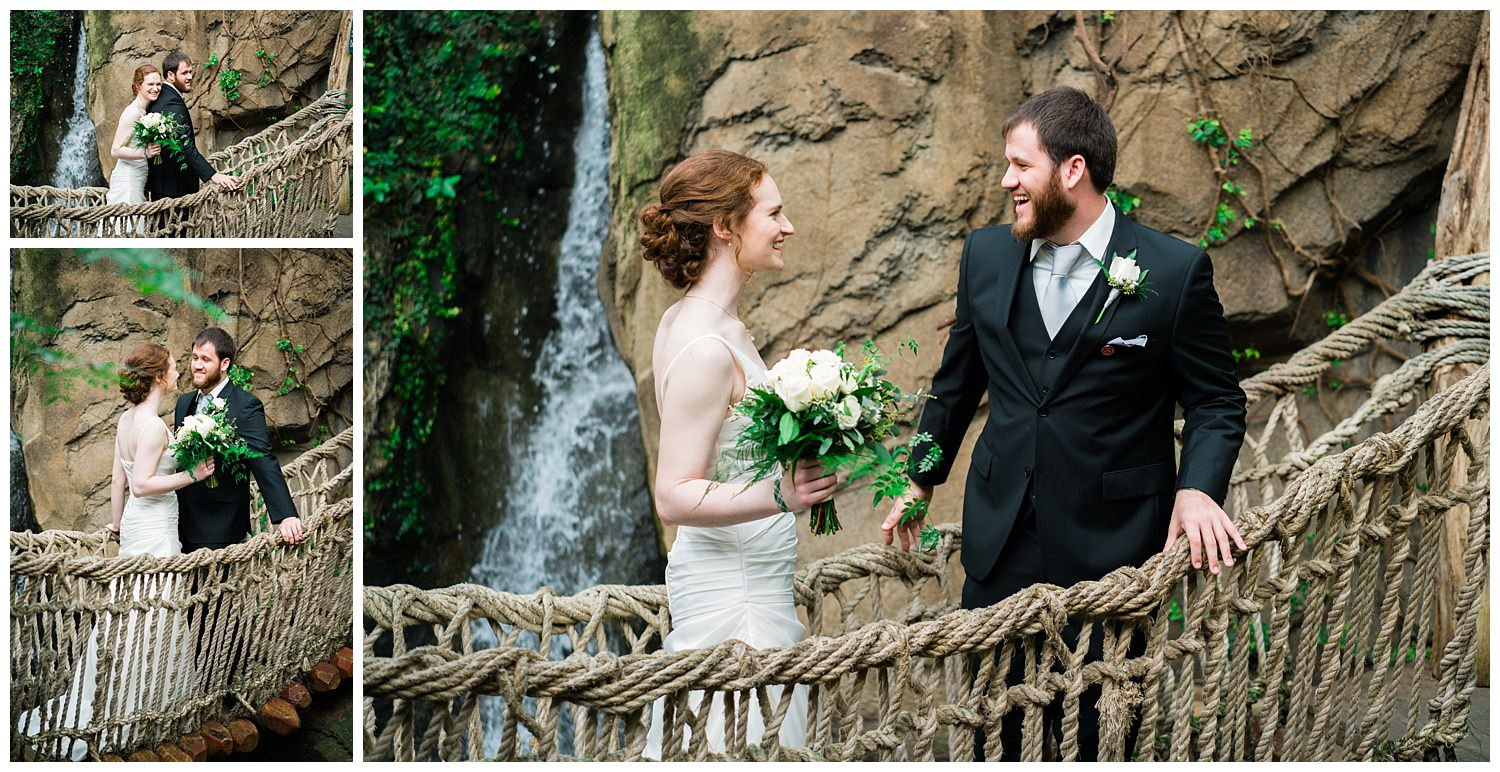 first look blank park zoo wedding