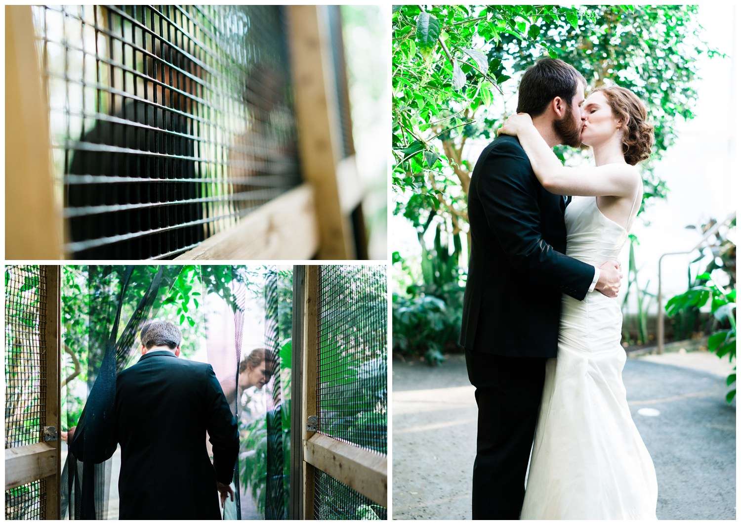 blank park zoo wedding bride and groom kissing