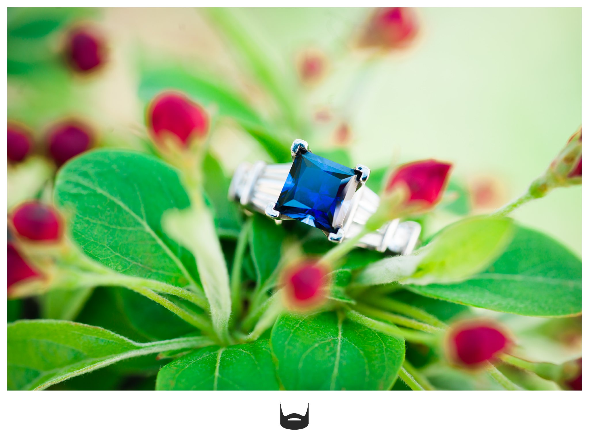 Des Moines Wedding Ring Saphire Photography